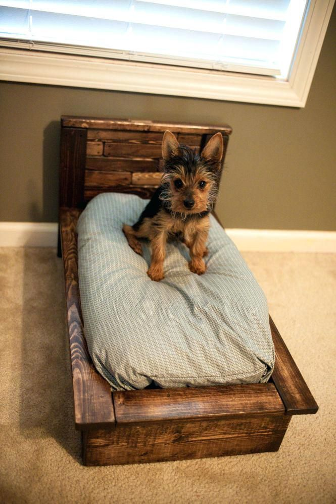 Pallet Dog Bed How To Make A Raised Wooden Dog Bed How To Make Wooden Dog Bed How To Build A Wooden Dog Bed Frame #dogbeds