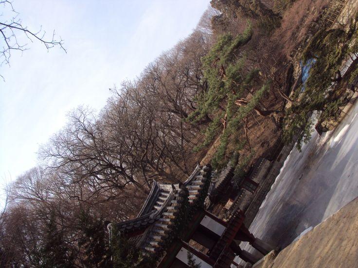 Chungdog (창덕궁) Palace