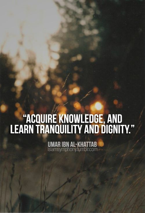 """Acquire knowledge, and learn tranquility and dignity.""  ― Umar ibn Al-Khattab"