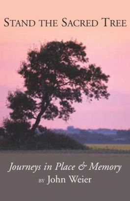 Stand the Sacred Tree isn't fiction. Nor is it non-fiction. It is about the truth of John Weier's life as a traveler. It is a book of nature, and birds, and water (or the lack of it), about the joy of life and the sorrow of illness.