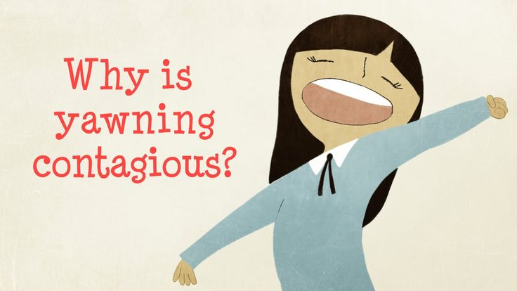 Why is yawning contagious? - Claudia Aguirre