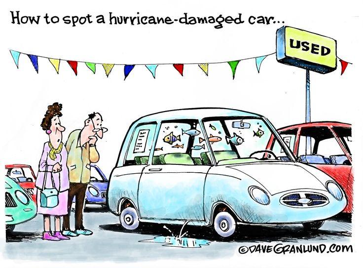 Dave Granlund cartoon on hurricane damaged cars.