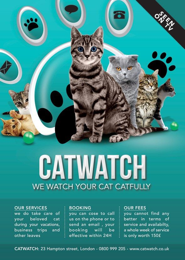 Cat Lover Shop Watch and Care Business