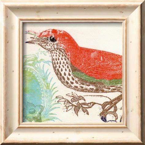 Swan Papell, 2 of 4.Birds Prints, Fine Art Prints, Birds Art, Birds Of Paradis, Bird Prints, Papel Art, Swan Papel, Birds Fine Art, Red Birds
