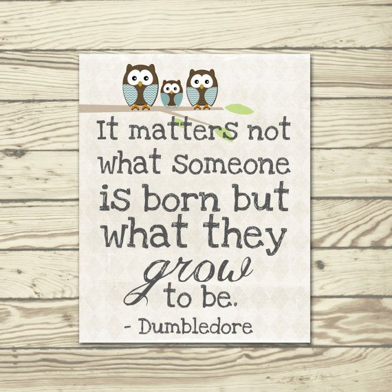 Harry Potter Dumbledore quote poster print It matters not what someone is born but what they grow to be Blue brown for boy