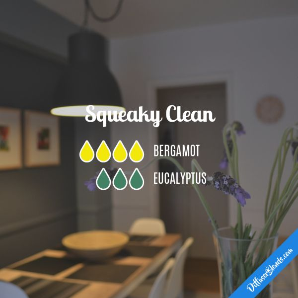Squeaky Clean - Essential Oil Diffuser Blend
