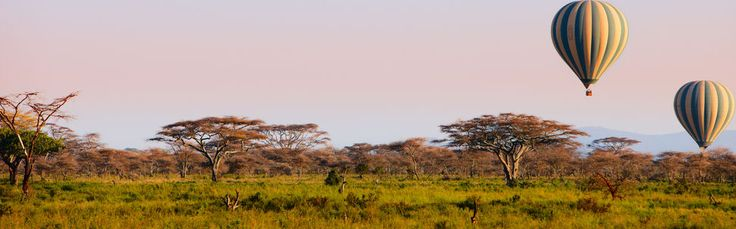 African bushveld ballon Safari. Please?