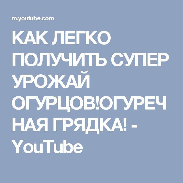 КАК ЛЕГКО ПОЛУЧИТЬ СУПЕР УРОЖАЙ ОГУРЦОВ!ОГУРЕЧНАЯ ГРЯДКА! - YouTube