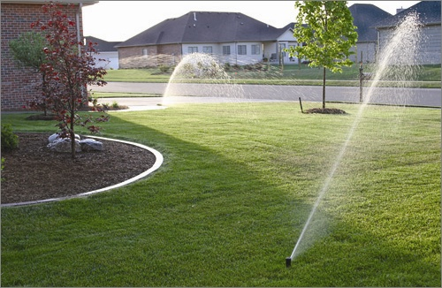 Orbit gear drive #sprinkers in action.  Try #watering in two or three 15 min bursts to really green it up!
