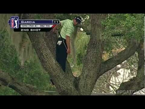 Sergio Garcia climbs a tree to hit one-handed second shot  Published on Mar 24, 2013    In the final round of the 2013 Arnold Palmer Invitational presented by MasterCard, Sergio Garcia hits his second from a tree near the fairway on the par-4 10th hole one-handed and backwards.    Category  Sports    License  Standard YouTube License