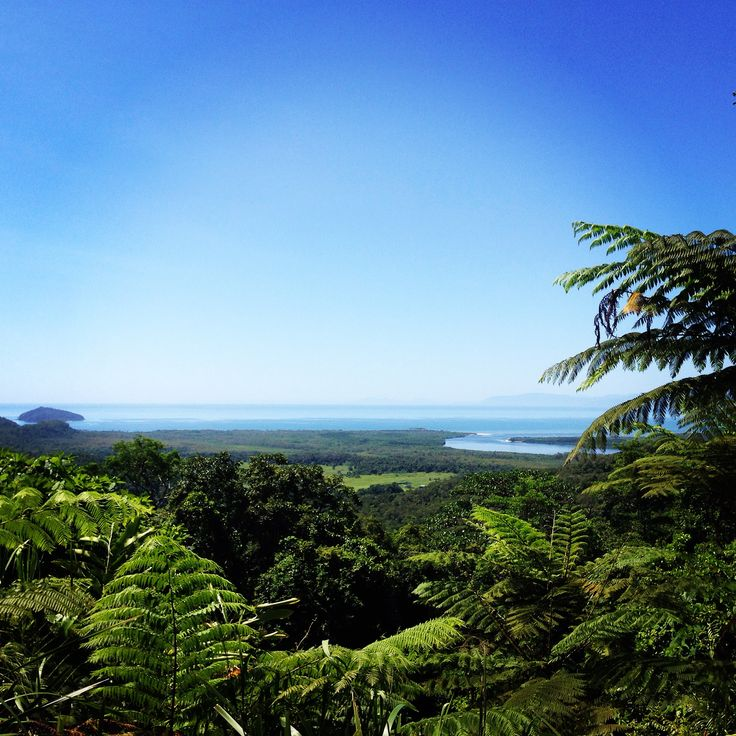 A picture perfect day at the Alexandra Lookout, Daintree, Australia