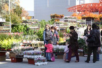 Специализирана изложба за цветя, декоративна растителност, градинско оборудване и аксесоари