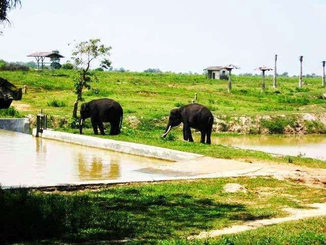 Travel Lampung