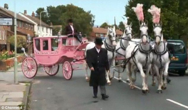 Horse And Pink Carriage.