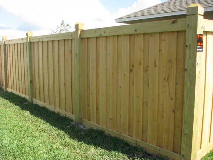Capped Board-on-Board Privacy Fence    without the taller posts