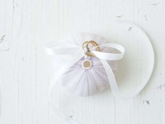 Hey, I found this really awesome Etsy listing at https://www.etsy.com/es/listing/180019068/sea-urchin-ring-pillow-wedding-pink-and