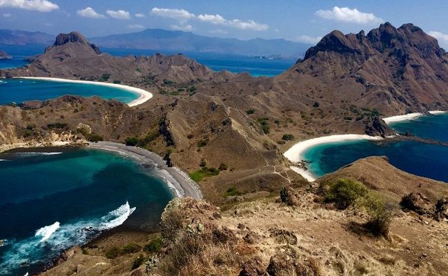 pulau komodo - Penelusuran Google
