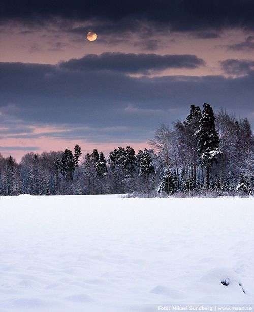 Sweden Winter Landscape