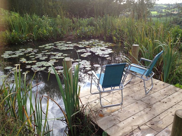 17 best images about pond deck ideas on pinterest diy for Koi pond deck