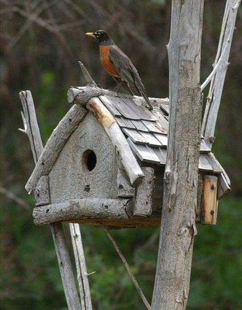 35 beautiful birdhouse design ideas birdhouse designs birdhouse rh pinterest com