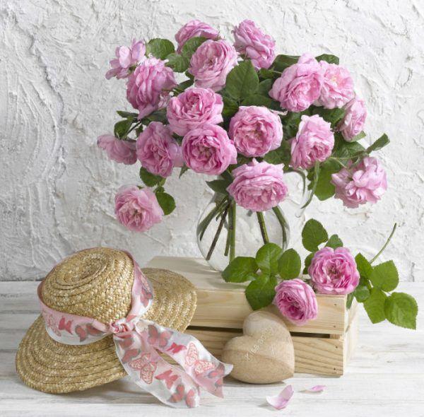 фотографии цветов -24 -07