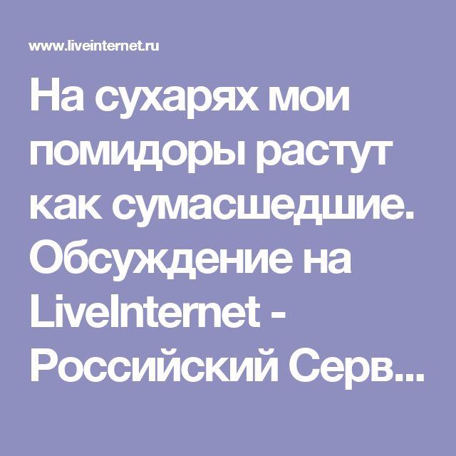 На сухарях мои помидоры растут как сумасшедшие. Обсуждение на LiveInternet - Российский Сервис Онлайн-Дневников