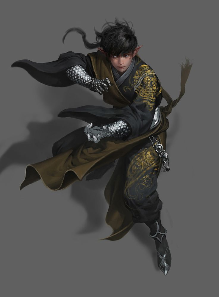 Male elf, in battle stance, short black hair, wearing flowing black clothes embroidered with gold patterns, brown tabard, scaled steel gauntlets.