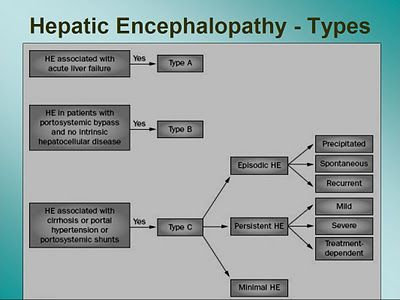 hepatic encephalopathy review article