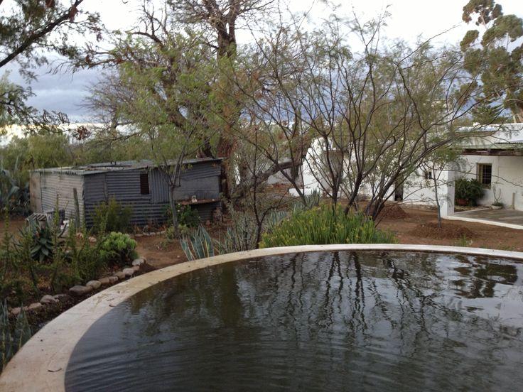 Karoo-oggend by die dam