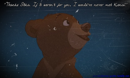 25+ Best Ideas About Brother Bear Quotes On Pinterest