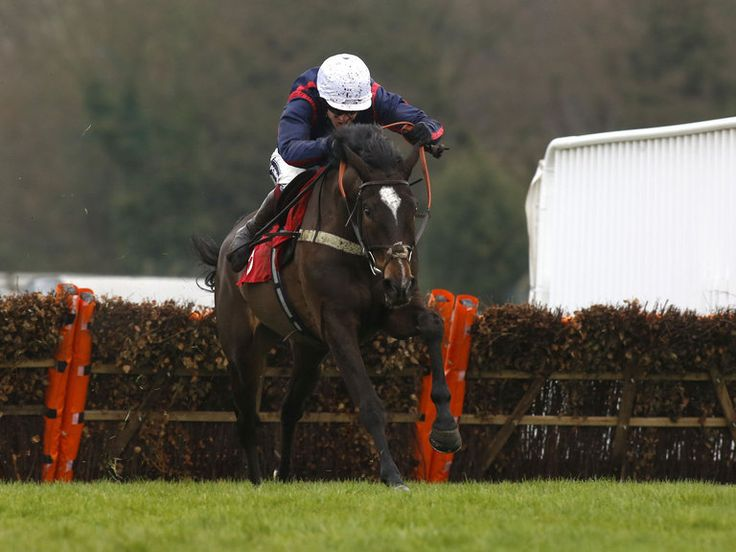 Don Bersy tames Lion at Sandown  https://www.racingvalue.com/don-bersy-tames-lion-at-sandown/