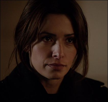 sarah shahi - (person of interest- t.v. show)