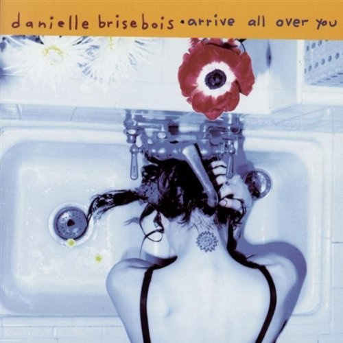 What If God Fell From The Sky Danielle Brisebois | Format: MP3 Download, http://www.amazon.com/dp/B001GNKSVQ/ref=cm_sw_r_pi_dp_MAH2pb0EE2BQ3