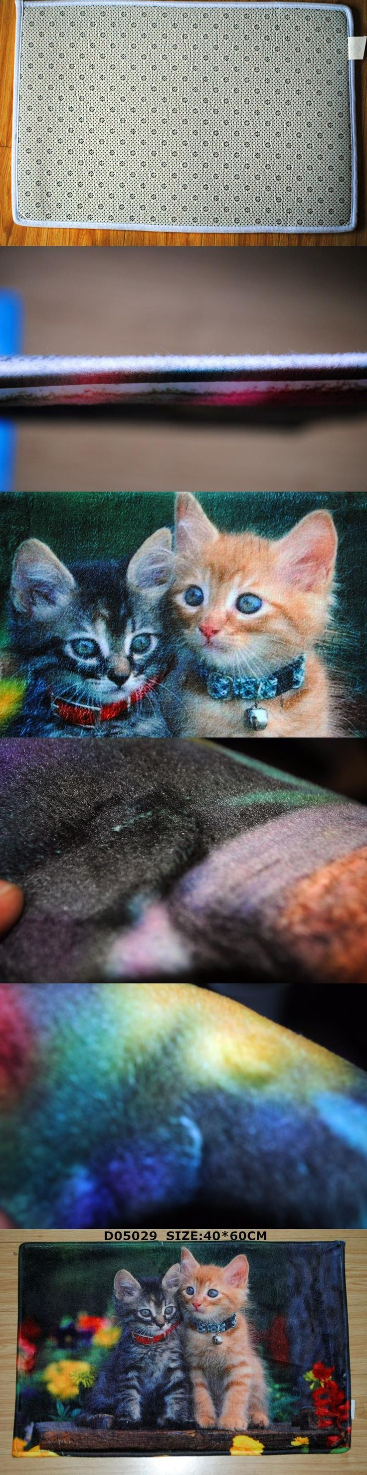 dark ragdoll cat