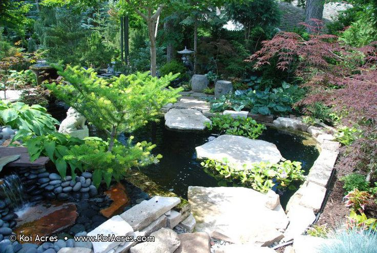 The 25 best pond construction ideas on pinterest for Koi pond builders orange county