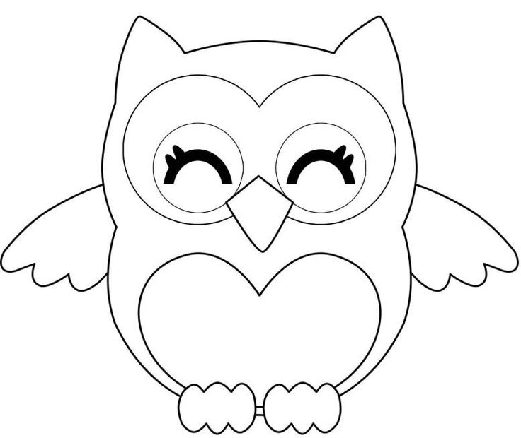 Owl that holds banner