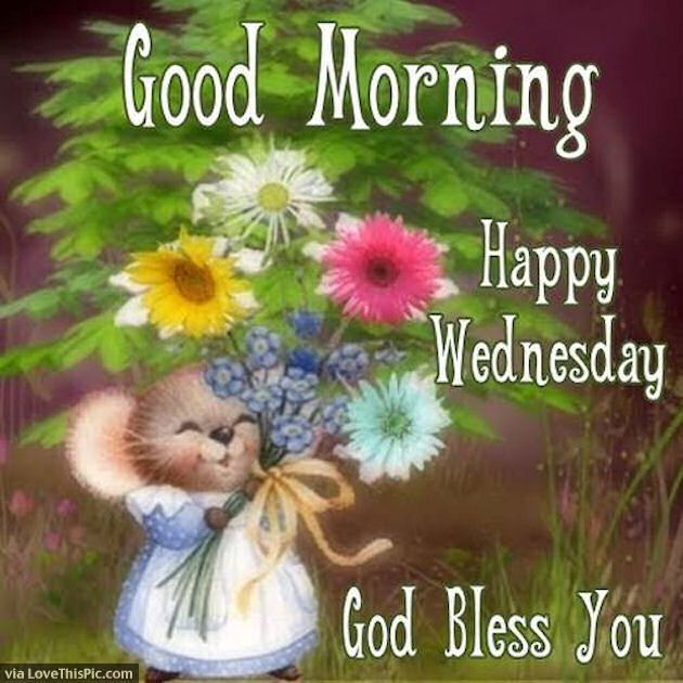 Cute Good Morning Happy Wednesday Quote good morning wednesday hump day wednesday quotes good morning quotes happy wednesday good morning wednesday wednesday quote happy wednesday quotes wednesday blessings cute wednesday quotes