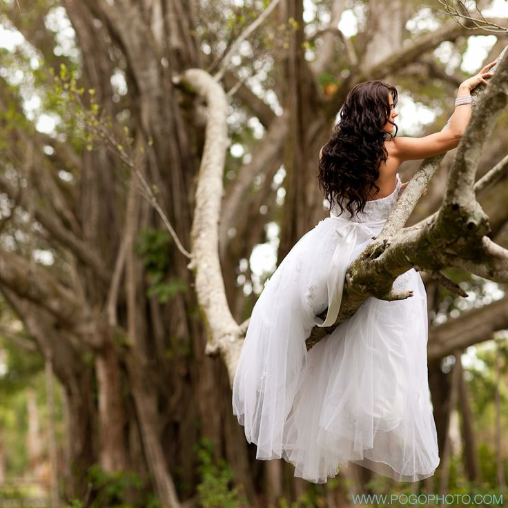 Pogo Photography - bridal portrait in a tree.....her firefighter husband lifted her up into the tree. :)