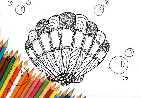 Sea shell coloring page to print downloads printable page A4