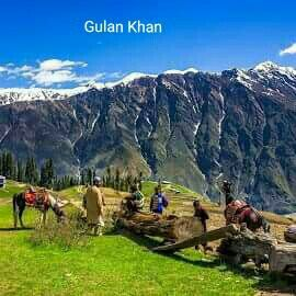 Beautiful fairy meadows Karakoram mountains range Gilgit Baltistan Pakistan
