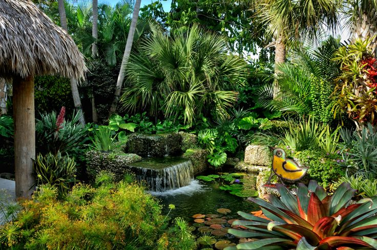 Landscape design hardscape water features tropical for Outdoor tropical fish pond