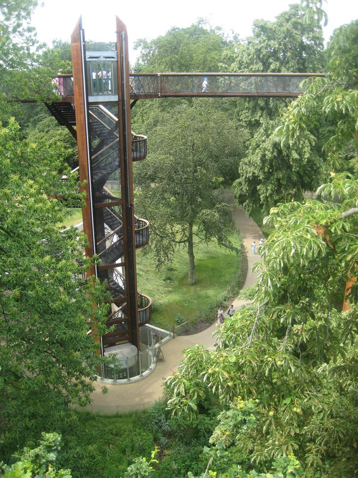 Places to go in London - Kew Gardens' tree top walk | pic: Andy Roberts Photos