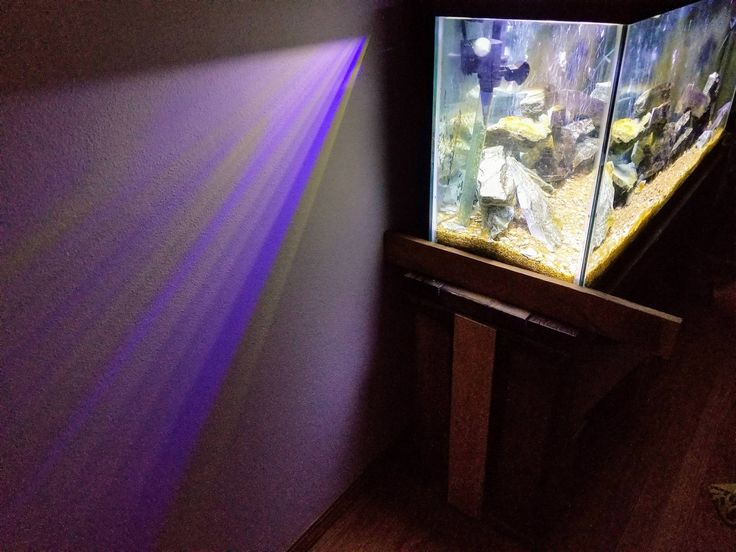Rainbow Prism On My Wall From My Aquarium Light