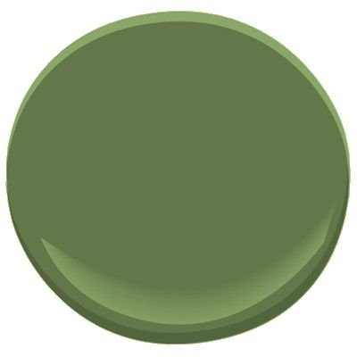 This color is amazing with white trim!! It is called Herb Garden from Benjamin Moore Paints.