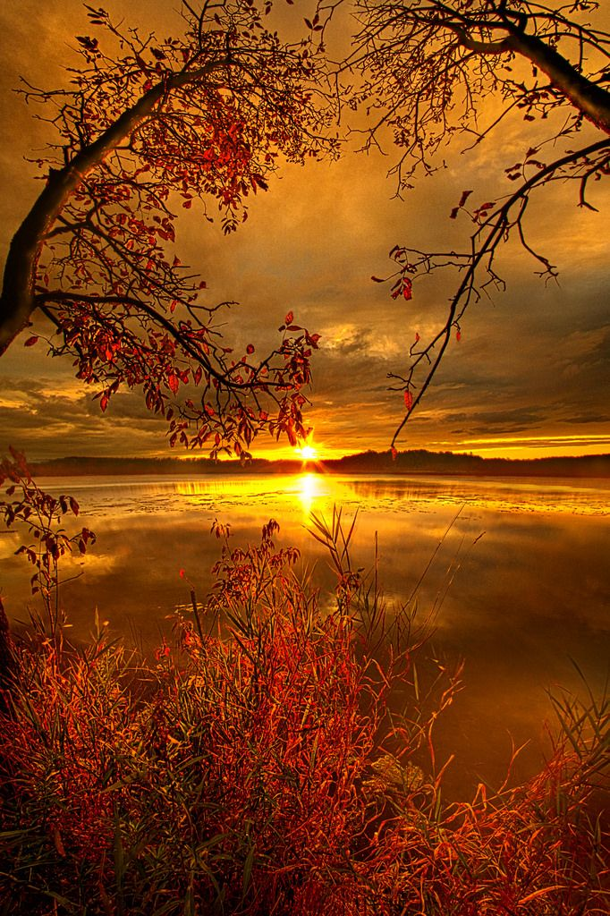 ~~Mother Nature's Son | Sunset on Mauthe Lake, Wisconsin | by Phil Koch~~