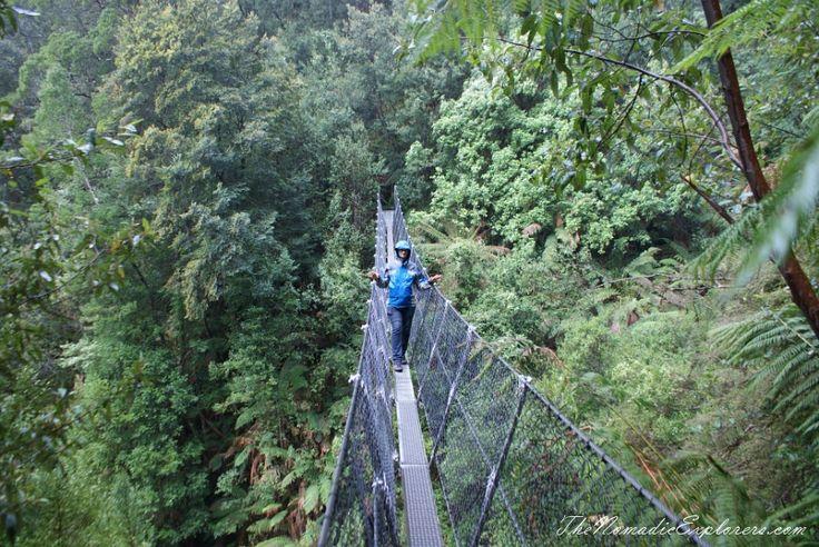 Tasmania, Day 5. Walk to Montezuma Falls near Rosebery