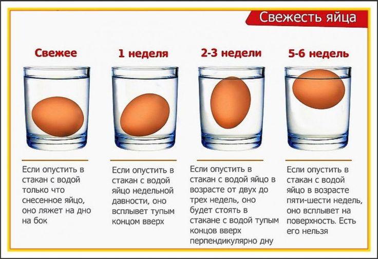 как проверить свежесть яиц в воде: 7 тыс изображений найдено в Яндекс.Картинках