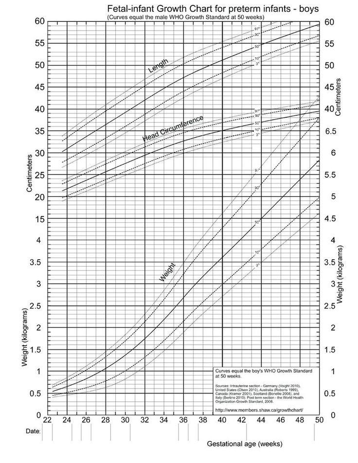 Immagine Correlata  Tabelle Accrescimento    Searching