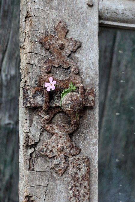 Ornate rusted gate latch... with a little pink flower....