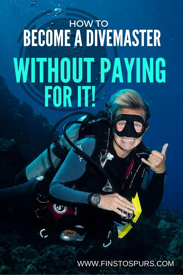 Want to work abroad and get paid to play in the ocean all day but have little funds to get started? Find out how to become a Divemaster without paying for it!